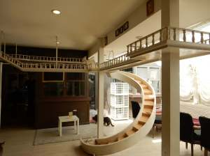 Cat staircase and walkway