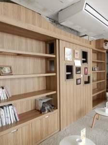 Cat bookcase